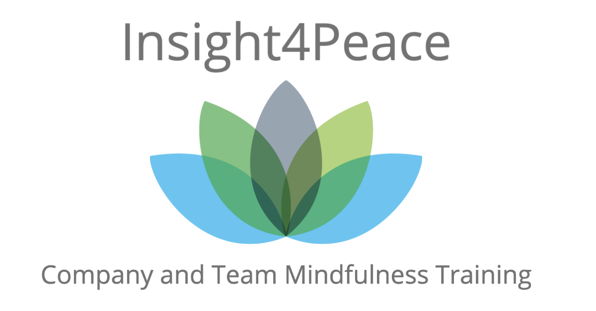 Insight4Peace
